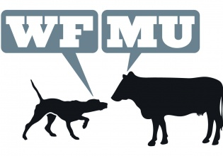 wfmu, radio, cultura, nueva, york, icono, underground, música