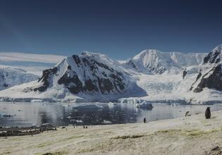 Antártida, libro, Película, planes, viajes