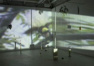 Movimiento Armónico, instalación de Leonor Serrano Rivas